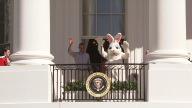 US Obama Egg Roll