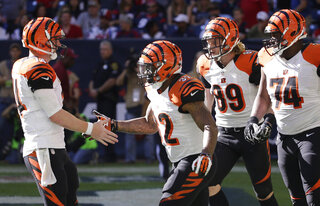 Jeremy Hill, Andy Dalton