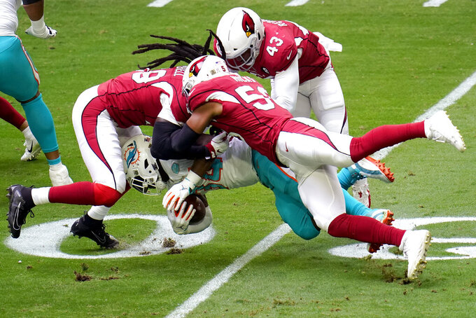 Miami Dolphins running back Jordan Howard, center, is hit by Arizona Cardinals middle linebacker Jordan Hicks, right, outside linebacker Haason Reddick (43) and Arizona Cardinals outside linebacker De'Vondre Campbell, left, during the first half of an NFL football game, Sunday, Nov. 8, 2020, in Glendale, Ariz. (AP Photo/Ross D. Franklin)