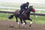 In this image provided by EQUI-PHOTO,  Hot Rod Charlie, with exercise rider Johnny Garcia up, gallops on the track at Monmouth Park Racetrack in Oceanport, N.J., Wednesday morning July 14, 2021. Hot Rod Charlie is the morning line favorite for Saturday's Haskell Stakes horse race. (Bill Denver/EQUI-PHOTO via AP)