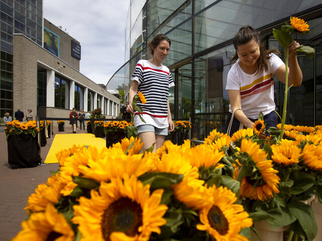 Visitors leaving the reopened Van Gogh Museum were offered a free sunflower in Amsterdam, Netherlands, Monday, June 1, 2020. The Dutch government took a major step to relax the coronavirus lockdown, with bars, restaurants, cinemas and museums reopening under strict conditions. (AP Photo/Peter Dejong)