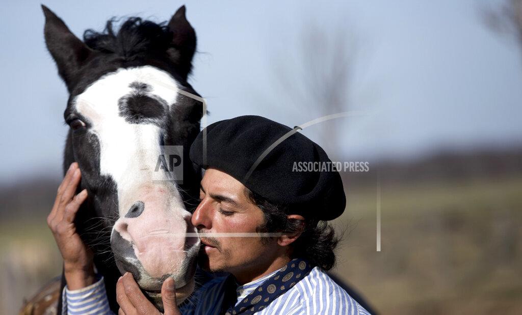 Argentina Horse Whisperer