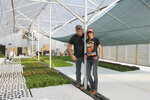 In this Friday, May 15, 2020 photo, Chris and Alexa Garro have opened a commercial-scale aquaponic greenhouse to offer fresh, locally-grown lettuce and herbs to Northern Hills and Wyoming communities pose at the farm in Nisland, S.D. (Lacey Peterson/Black Hills Pioneer via AP)