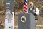 Interior Secretary David Bernhardt announces the gray wolf's recovery
