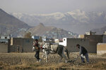 Afghans use a horse to plow their field in Kabul, Afghanistan, Tuesday, Dec. 3, 2019. A new survey released by the Asia Foundation Tuesday, says Afghans are increasingly fearful for their personal safety, but slightly more believe their war-weary country is moving in the right direction compared to previous years. (AP Photo/Altaf Qadri)