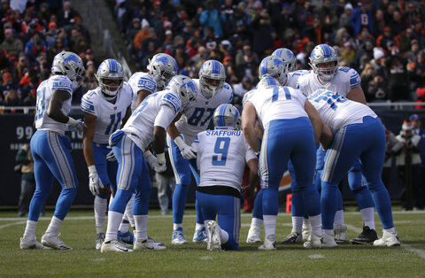 Panthers Lions Preview Football
