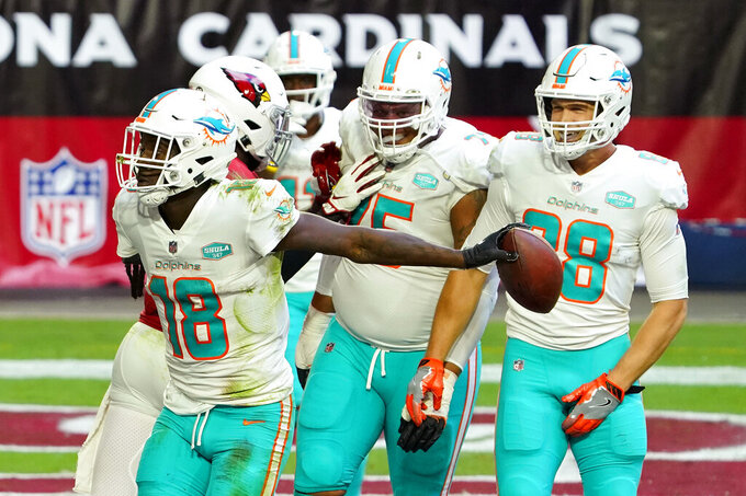 Miami Dolphins wide receiver Preston Williams (18) celebrates his touchdown against the Arizona Cardinals during the first half of an NFL football game, Sunday, Nov. 8, 2020, in Glendale, Ariz. (AP Photo/Rick Scuteri)