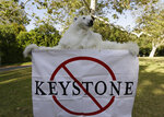 FILE - In this May 7, 2014, file photo, a member of the Center for Biological Diversity in polar bear costume protests the Keystone XL pipeline during a visit by then President Barack Obama for a two-day visit to Los Angeles. The sponsor of the Keystone XL crude oil pipeline says it's pulling the plug on the contentious project, Wednesday, June 9, 2021,  after Canadian officials failed to persuade the Biden administration to reverse its cancellation of the company's permit. (AP Photo/Damian Dovarganes, File)