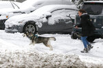 A woman walks her dog in the snow after an overnight snowfall, Monday, Dec. 2, 2019, in Marlborough, Mass. (AP Photo/Bill Sikes)