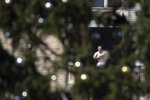 Pope Francis, framed by the St. Peter's Square Christmas tree, waves during the Angelus noon prayer he recited from the window of his studio, at the Vatican, Sunday, Dec. 1, 2019. (AP Photo/Alessandra Tarantino)