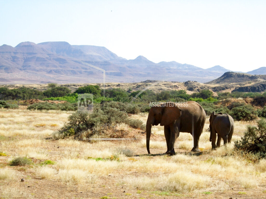 Travel Trip Spirit of Namibia