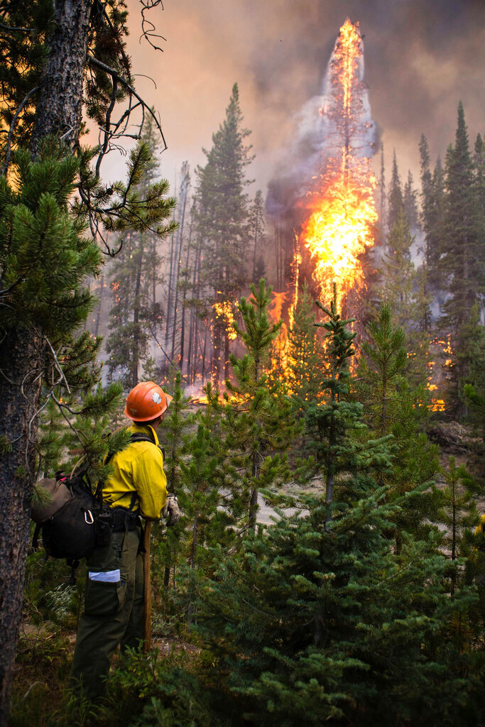 FILE - In this Aug. 7, 2019 file photo released by U.S. Forest Service, a firefighter watches flames from the Nethker Fire engulf trees at Payette National Forest near McCall, Idaho. Environmental groups say the U.S. Forest Service is ignoring a 9th U.S. Circuit Court of Appeals ruling by restarting a giant forest project in Idaho and have filed another lawsuit seeking to stop the project a second time. (U.S. Forest Service via AP, File)