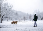 Skylar, a German Shepherd Chow mix, walks in the snow at Fishburn Park in Roanoke, Va., with her owner Mark Jones of Roanoke, on Monday, March 12, 2018.  (Erica Yoon/The Roanoke Times via AP)