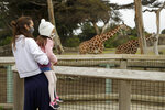 A woman holds a child while viewing giraffes at the San Francisco Zoo on Monday, July 13, 2020, in San Francisco. (AP Photo/Ben Margot)