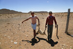 In this photo taken on Thursday, Nov. 14, 2019, children carry a dead lamb belonging to small scale farmer Gertruida Buffel in Vosburg, South Africa. The worst drought some farmers have seen in decades is affecting much of southern Africa. The United Nations says more than 11 million people now face crisis levels of food insecurity. (AP Photo/Denis Farrell)