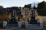 Large black plastic bags containing radioactive waste are stacked behind a family cemetery Tuesday, Dec. 3, 2019, in the abandoned town of Futaba, Fukushima prefecture, Japan. Government officials say it's