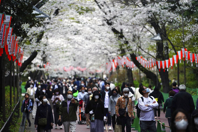 People wearing protective masks to help curb the spread of the coronavirus walk under cherry blossoms Friday, March 26, 2021, in Tokyo. The Japanese capital confirmed more than 370 new coronavirus cases on Friday. (AP Photo/Eugene Hoshiko)
