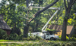 FILE- In this Aug. 7, 2020 file photo, workers clean up tree damage in Glastonbury, Conn. in the wake of Tropical Storm Isaias. On Wednesday, Oct. 21, 2020, Connecticut Attorney General William Tong asked regulators to order reimbursements for utility customers who lost food and medicine during August's days-long power outage in the wake of Tropical Storm Isaias. (AP Photo/David Collins, File)