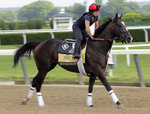 Exercise rider Tammy Fox rides Everfast during a workout at Belmont Park in Elmont, N.Y., Thursday, June 6, 2019. The 151st Belmont Stakes horse race will be run on Saturday, June 8, 2019. (AP Photo/Seth Wenig)