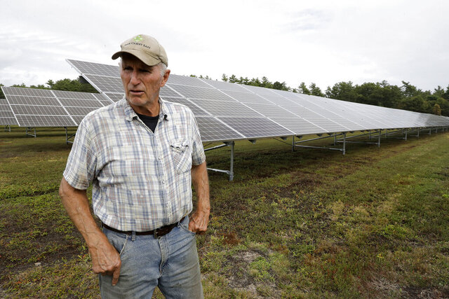 In this Wednesday, Oct. 2, 2019, photo, cranberry grower Dick Ward, of Carver, Mass., stands near a solar array in a cranberry bog on his farm, in Carver. The revenue that solar power offers has been helpful to farmers as the price of cranberries has dipped in recent years. (AP Photo/Steven Senne)
