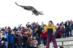 Rebecca Lessard of Wings of Wonder releases the first of two immature bald eagles on Saturday, Dec 1, 2018, at the Homestead Township Hall in Honor, Mich. (Jan-Michael Stump/Traverse City Record-Eagle via AP)