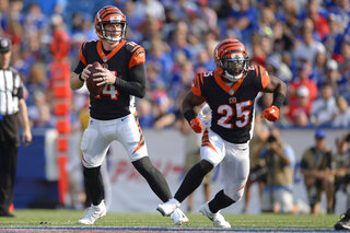 Bengals Preview