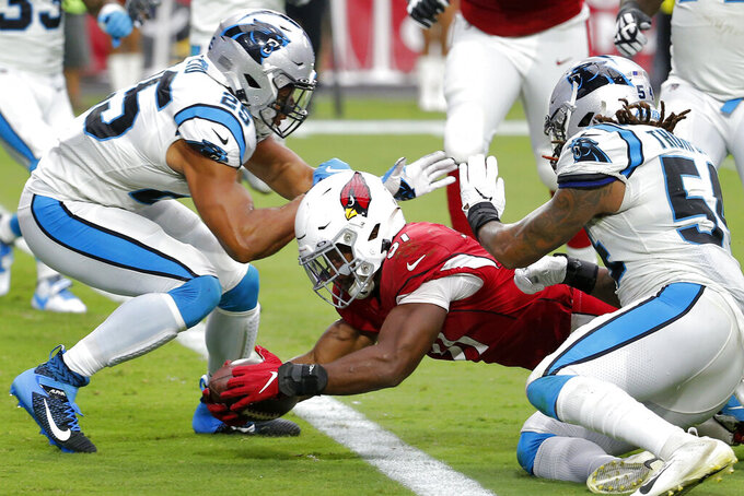 Arizona Cardinals running back David Johnson (31) dives in for the touchdown as Carolina Panthers strong safety Eric Reid (25) and outside linebacker Shaq Thompson (54) defends during the second half of an NFL football game, Sunday, Sept. 22, 2019, in Glendale, Ariz. (AP Photo/Rick Scuteri)