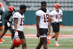 Cincinnati Bengals wide receivers A.J. Green, right, and John Ross, left, speak during practice at the team's NFL football facility, Wednesday, June 12, 2019, in Cincinnati. (AP Photo/John Minchillo)