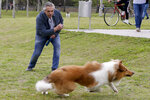 Presidential candidate Alberto Fernandez plays with his dog Dylan before voting in Buenos Aires, Argentina, Sunday, Oct. 27, 2019. Argentina could take a political turn in Sunday's presidential elections, with center-left Peronist candidate Alberto Fernandez favored to oust Mauricio Macri amid growing frustration over the country's economic crisis. (AP Photo/Natacha Pisarenko)