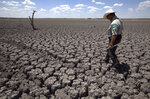 FILE - In this Aug 3, 2011 file photo, Texas State Park police officer Thomas Bigham walks across the cracked lake bed of O.C. Fisher Lake, in San Angelo, Texas. The impacts of record-breaking heat and years of low or no rainfall can be felt years after a dry spell passes. (AP Photo/Tony Gutierrez, File)