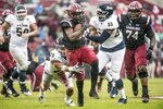 South Carolina running back Mon Denson (34) runs with the ball against Akron lineman R.J. Kelly (55) during the first half of an NCAA college football game Saturday, Dec. 1, 2018, in Columbia, S.C. (AP Photo/Sean Rayford)