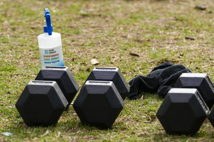A bottle of disinfectant sits by gym equipment in a park in the eastern suburbs of Sydney Tuesday, Sept. 14, 2021. Personal trainers have turned a waterfront park at Sydney's Rushcutters Bay into an outdoor gym to get around pandemic lockdown restrictions. (AP Photo/Mark Baker)