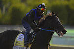 Preakness entrant Midnight Bourbon works out during a training session ahead of the Preakness Stakes horse race at Pimlico Race Course, Wednesday, May 12, 2021, in Baltimore. (AP Photo/Julio Cortez)