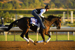 Omaha Beach, entered in the Dirt Mile horse race, works out on the track at Santa Anita Park for the Breeders' Cup, Thursday, Oct. 31, 2019, in Arcadia, Calif. (AP Photo/Mark J. Terrill)
