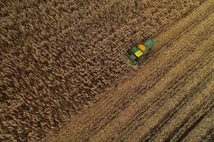 FILE - In this Nov. 25, 2019, file photo a corn harvester pushes through a field of grain corn in Warsaw, N.Y. On Thursday, Dec. 12, the Labor Department releases the Producer Price Index for November (AP Photo/Julie Jacobson, File)