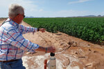 """Paul """"Paco"""" Ollerton flushes water valves at his farm near Casa Grande, Ariz., on Tuesday, July 20, 2021. Climate change, drought and high demand are expected to force the first-ever mandatory cuts from the Colorado River water supply, and Arizona farmers will be hit hardest. (AP Photo/Felicia Fonseca)"""
