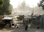 Santa Ana winds blow through a horse stable in Chatsworth, Calif., next to Stoney Peak Park on Topanga Canyon Blvd. on Thursday, Oct. 10, 2019. (Dean Musgrove/The Orange County Register via AP)
