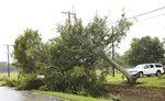 A downed tree following Hurricane Nicholas in Bay City, Texas on Tuesday, Sept. 14, 2021. (Elizabeth Conley/Houston Chronicle via AP)