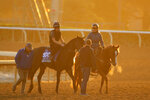A'Ali, left, entered in the the Juvenile Turf Sprint horse race, is warmed up on the track at Santa Anita Park for the Breeders' Cup, Thursday, Oct. 31, 2019, in Arcadia, Calif. (AP Photo/Mark J. Terrill)