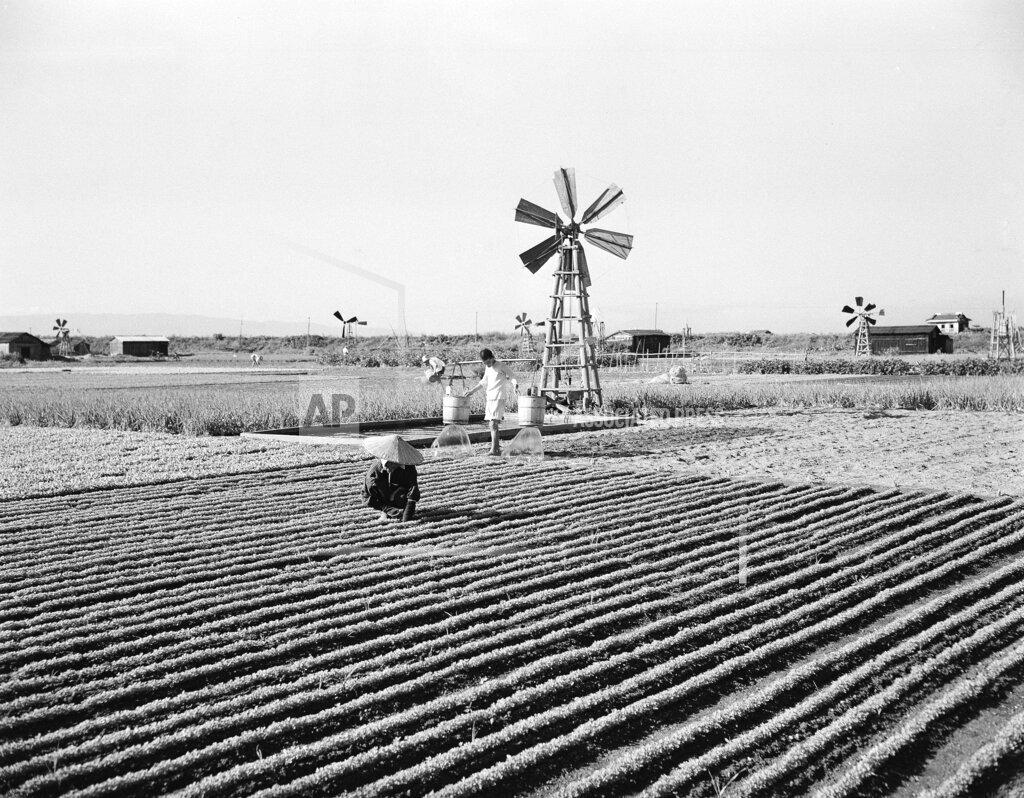 Watchf AP I   JPN APHS392347 View of a Japanese Farm
