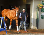 Justify, led by trainer Bob Baffert, emerges from Barn 33 to meet the public the morning after winning the 144th Kentucky Derby at Churchill Downs in Louisville, Ky., Sunday, May 6, 2018. (AP Photo/Garry Jones)