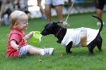 Stella Jones, a 17-month old Atlanta resident, plays with Kira, a dog dressed as a Starbucks coffee cup, at Doggy Con in Woodruff Park, Saturday, Aug. 17, 2019, in Atlanta. Kira's owner Tali Higgins dressed like a Starbucks barista.