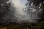 An Israeli firefighter works to battle a second day of wildfires near Shoresh, on the outskirts of Jerusalem, Monday, Aug. 16, 2021. Israel Fire and Rescue service said in a statement on Monday, that 45 firefighting teams accompanied by eight planes were working to contain five fires in the forested hills west of the city. (AP Photo/Maya Alleruzzo)