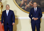 Prime Minister of Hungary Viktor Orban, left, stands next to Prime Minister of Slovenia Janez Jansa in Ljubljana, Slovenia, Friday, July 9, 2021. Four prime ministers of Visegrad Group met with Slovenia's Prime minister Jansa in Slovenia which assumed the EU Presidency earlier this month. (AP Photo)