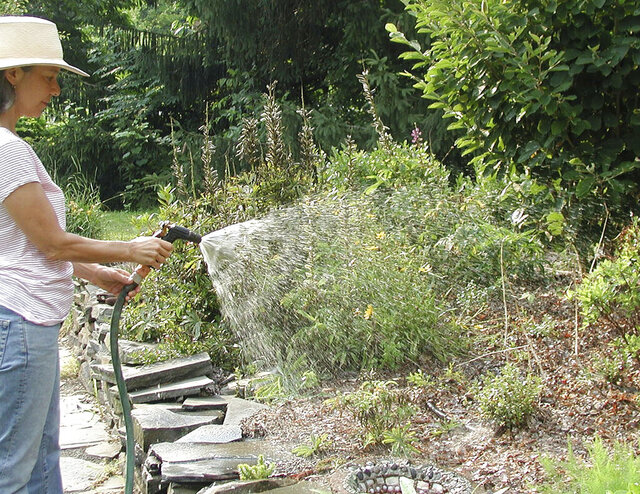 This undated photo shows plants being watered in New Paltz, N.Y. Watering with a hose end sprayer is satisfying to the gardener but other methods of watering are much more effective in getting enough water into the ground to benefit plants. (Lee Reich via AP)
