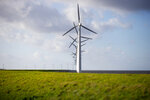 Wind turbines are seen on a dike near Urk, Netherlands, Friday, Jan. 22, 2021. A group of scientists, including five Nobel laureates, called Friday for more action to adapt the world to the effects of climate change, drawing comparisons with the faltering response to the coronavirus crisis, ahead of a major online conference on climate adaptation starting Monday and hosted by the Netherlands. (AP Photo/Peter Dejong)