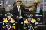 Boston Bruins head coach Bruce Cassidy appeals to an official from the bench during the second period in Game 5 of the NHL hockey Stanley Cup Final against the St. Louis Blues, Thursday, June 6, 2019, in Boston. (AP Photo/Charles Krupa)