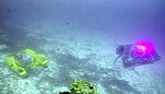 An image taken from video issued by Nekton shows two submersibles from the vessel the Ocean Zephyr during a descent into the Indian Ocean off Alphonse Atoll near the Seychelles, Tuesday March 12, 2019. Members of the British-led Nekton research team boarded two submersible vessels and descended into the waters off the Seychelles on Tuesday, marking a defining moment in their mission to document changes to the Indian Ocean. The submersibles will be battling strong undersea currents and potentially challenging weather conditions as they survey the side of an undersea mountain off Alphonse Atoll. (Nekton via AP)