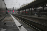 A pigeon perches on a platform at the Gare de Lyon train station, Friday, Dec. 6, 2019 in Paris. Frustrated travelers are meeting transportation chaos around France for a second day, as unions dig in for what they hope is a protracted strike against government plans to redesign the national retirement system. (AP Photo/Rafael Yaghobzadeh)