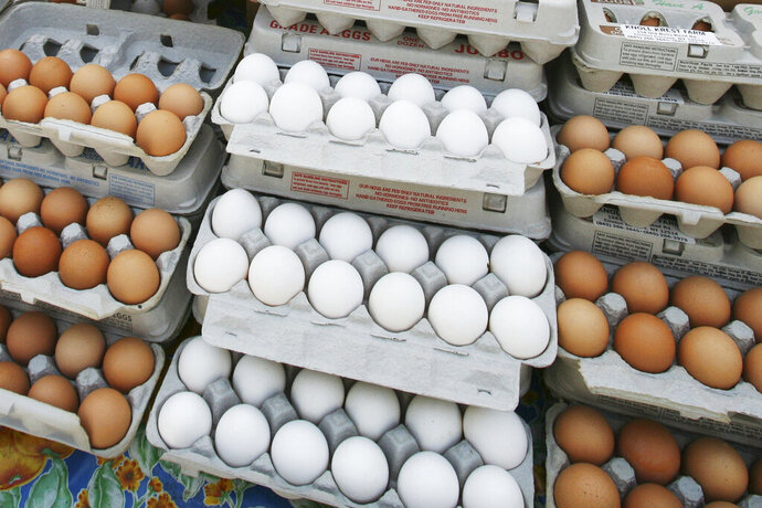 FILE - In this May 14, 2008 file photo, cartons of eggs are displayed for sale in the Union Square green market in New York. The latest U.S. research on eggs won't go over easy for those can't eat breakfast without them. Study participants who ate about 1 ½ eggs daily had a slightly higher risk of heart disease than those who ate no eggs. The study showed the more eggs, the greater the risk. The chances of dying early were also elevated. (AP Photo/Mark Lennihan)